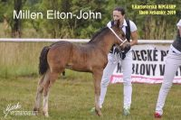 Millen Elton-John