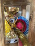 Foal Champion - M. Gladiator
